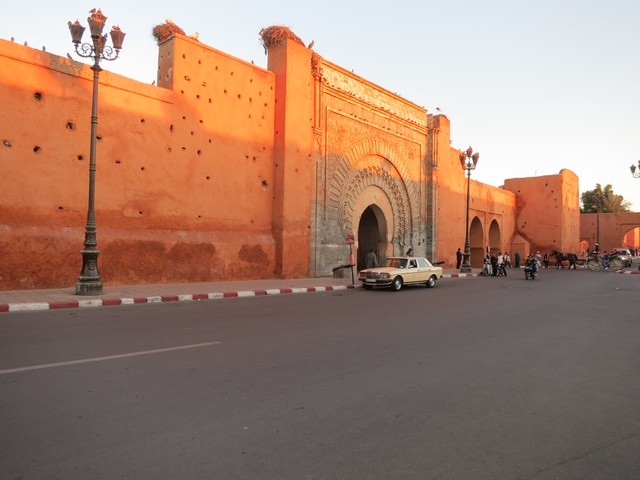 Storks on the medina walls in Marrakech at sunset
